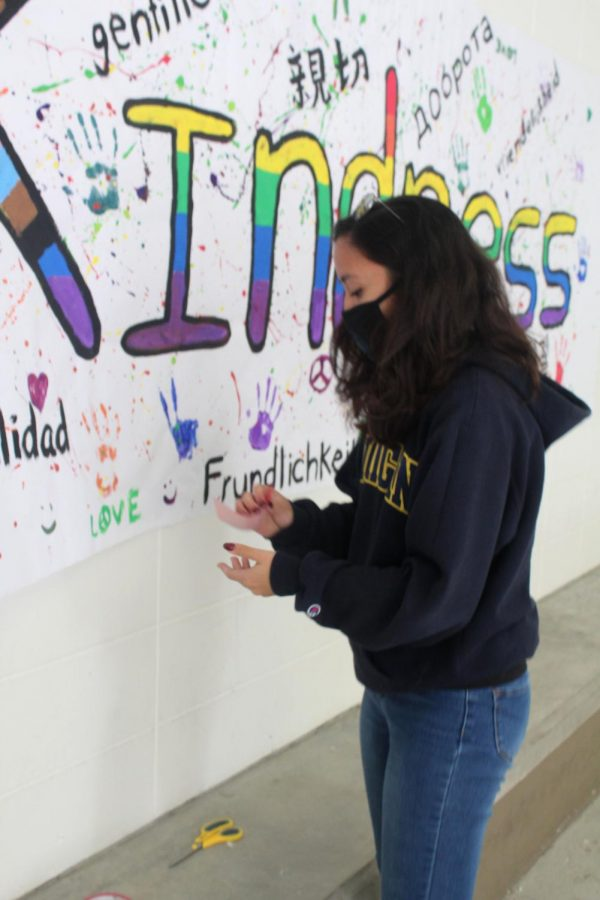 Senior Casey Miltner helps tape  a kindness poster in the Hub  on Feb. 16. The National Honor  Society also passed out candy.
