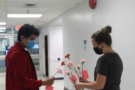 Seniors Alex Morales and Liz Barker sort carnations in B-wing  before delivering them to classrooms on Feb. 12.