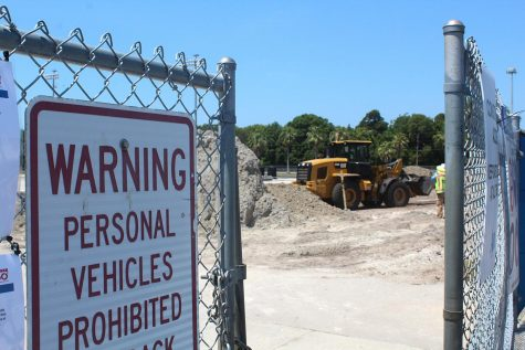 Trees on campus cut down to make way for new construction